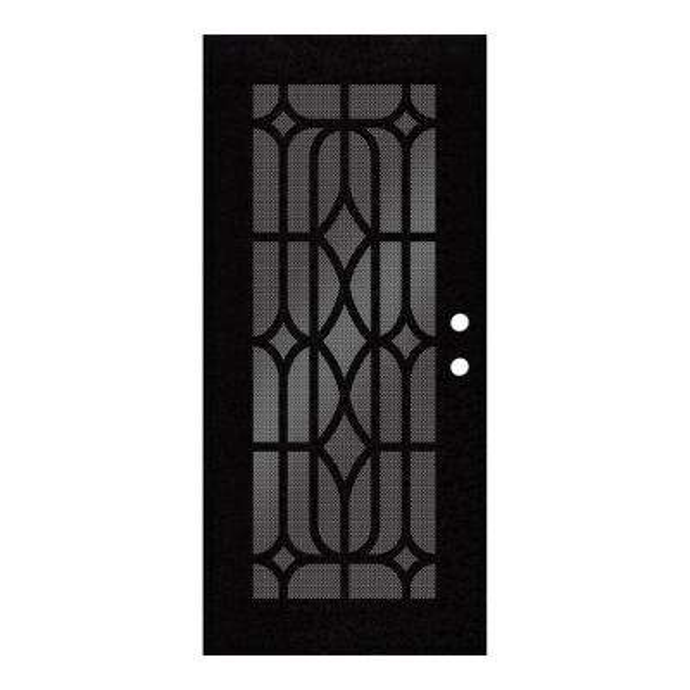 36 in. x 80 in. Essex Black Left-Hand Surface Mount Security Door with Black Perforated Metal Screen
