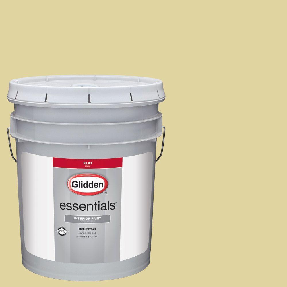 Hdgg06 Spring Willow Green Flat Interior Paint