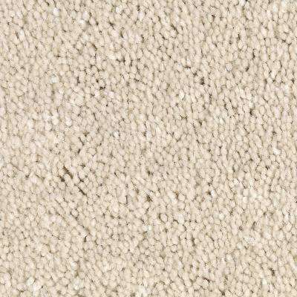 Carpet Sample - Gemini I Color - Hazy Stratus Texture 8 in. x 8 in.