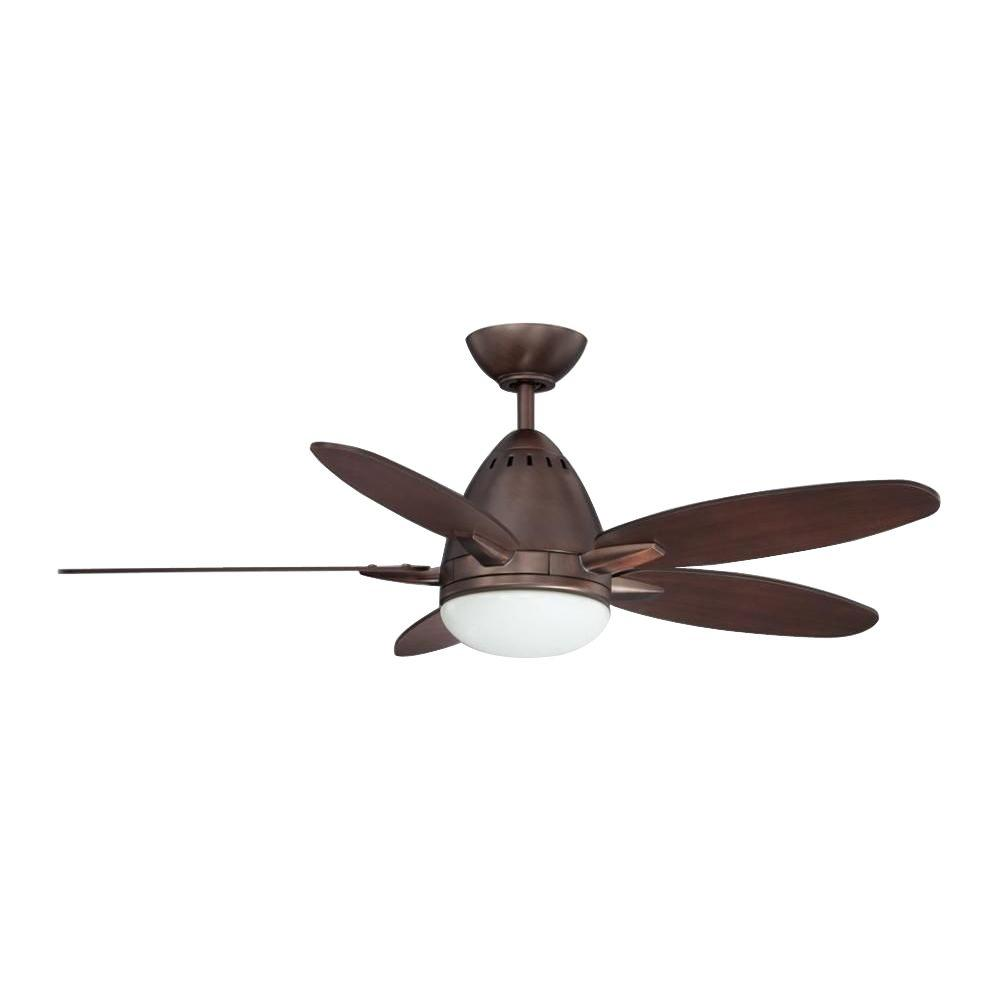 Cassiopeia 44 in. Oil Rubbed Bronze Indoor Ceiling Fan