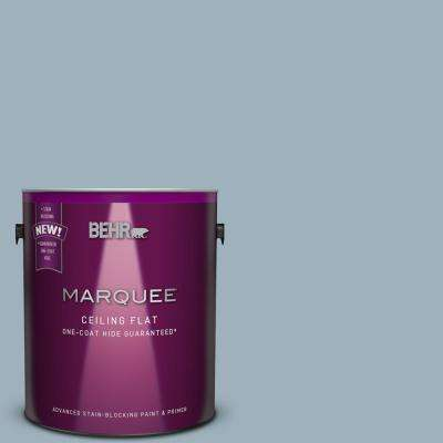 1 gal. #MQ5-59 Tinted to Ovation One-Coat Hide Flat Interior Ceiling Paint and Primer in One