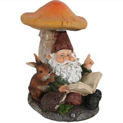 Book Worm Bernard The Outdoor Lawn Garden Statue Gnome With Mushroom And  Solar Light