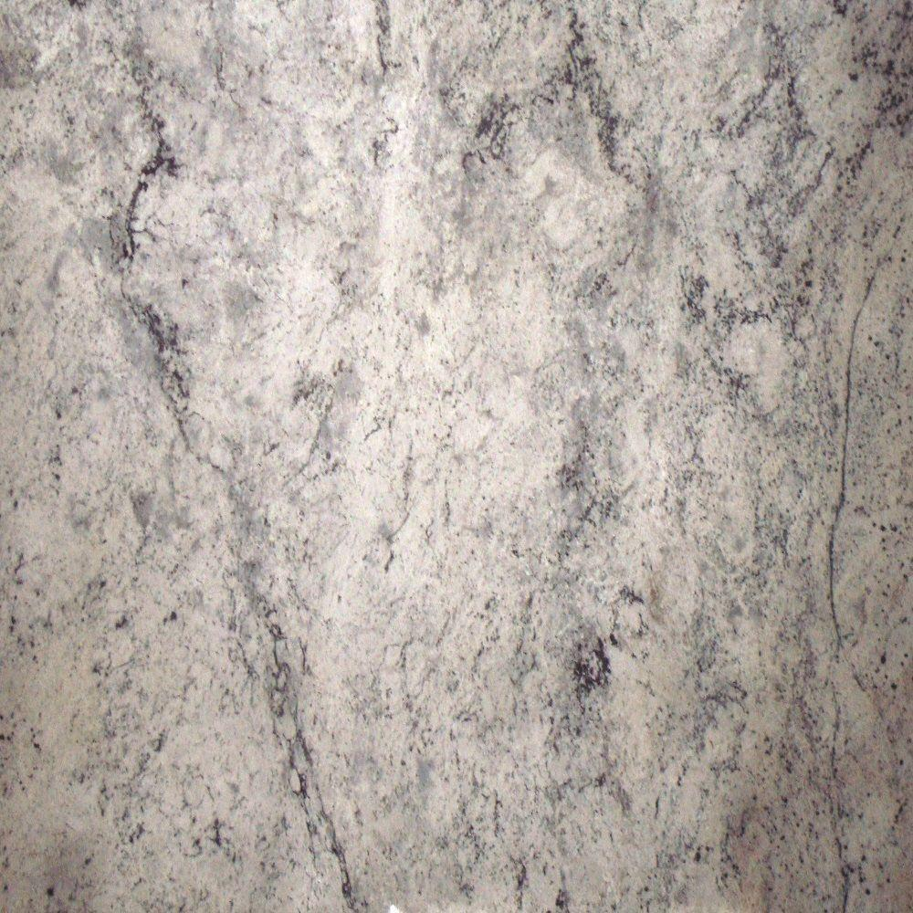 Stonemark Granite 3 in. x 3 in. Granite Countertop Sample in Siberian White
