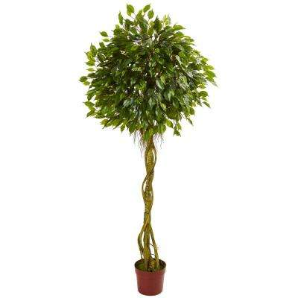 6 ft. UV Resistant Indoor/Outdoor Ficus Artificial Topiary Tree