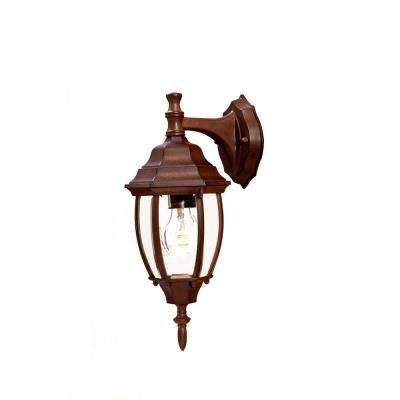 Wexford Collection 1-Light Burled Walnut Outdoor Wall-Mount Light Fixture