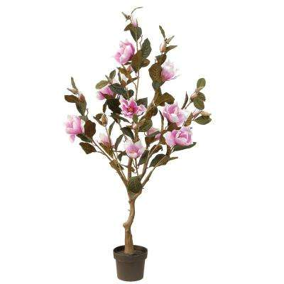 48 in. Pink Magnolia Tree