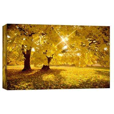 10.in x 12.in ''Big Leaf Maple Trees in Fall Color with Sunburst'' Printed Canvas Wall Art