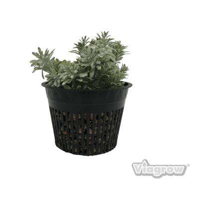 6 in. Net Pots, Round Cup with Slotted Plastic Mesh (25-pack)
