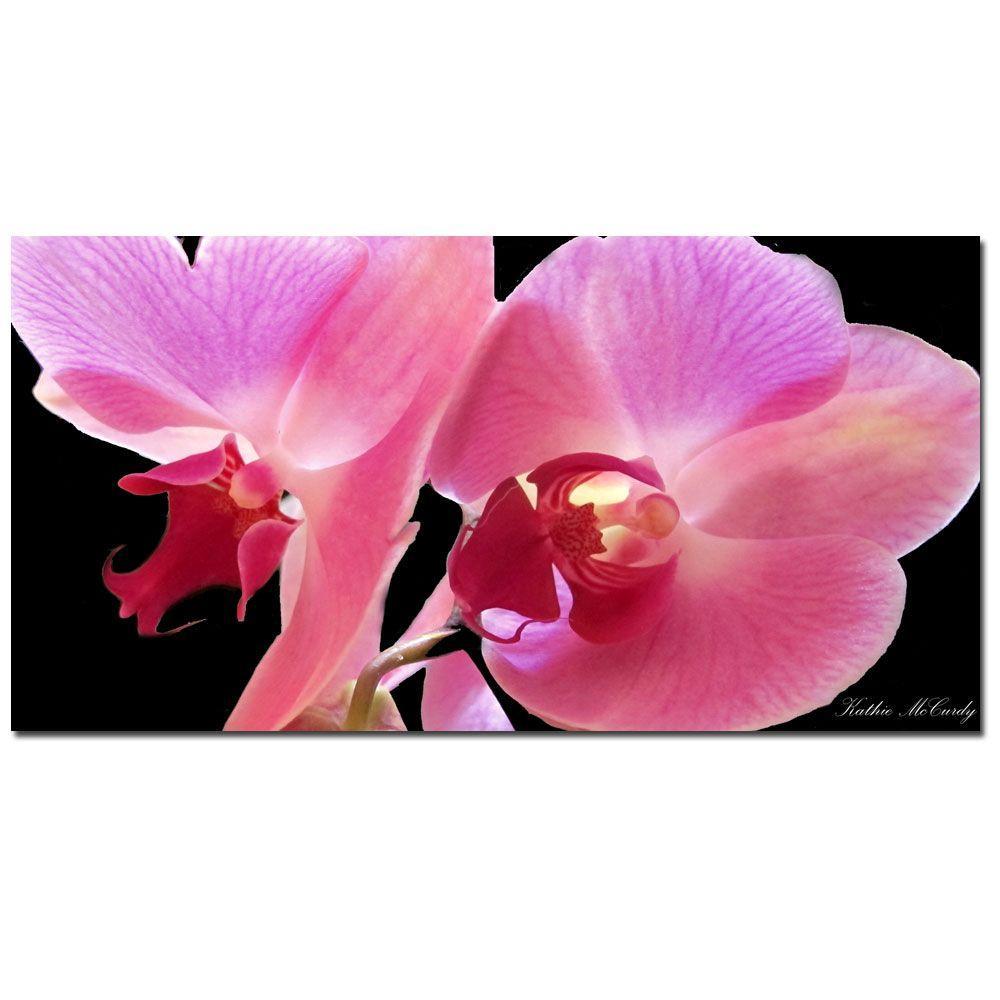 Trademark Fine Art 24 in. x 47 in. Orchid Canvas Art
