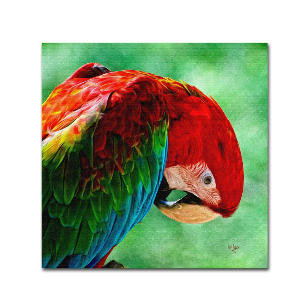 18 in. x 18 in. Colorful Macaw Square Format Canvas Art