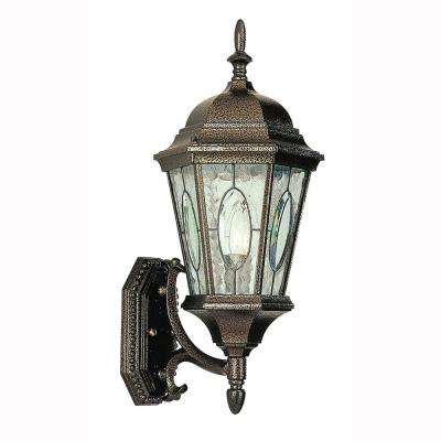 Cameo 1-Light Outdoor Brown Coach Lantern with Water Glass