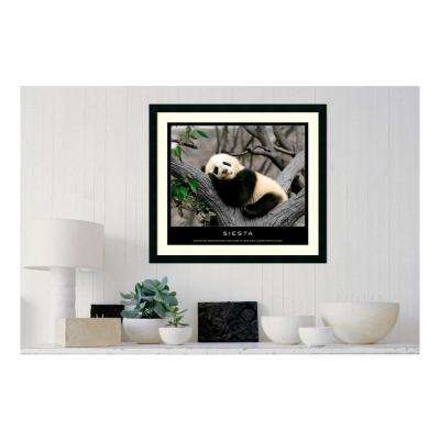 30.25 in. W x 27.13 in. H Siesta' Printed Framed Wall Art
