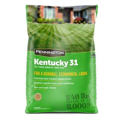 Kentucky 31, 40 lbs. Tall Fescue Penkoted Grass Seed