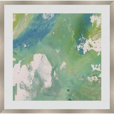 """21 in. x 21 in. """"Aqueous Nature V"""" Framed Giclee Print Wall Art"""