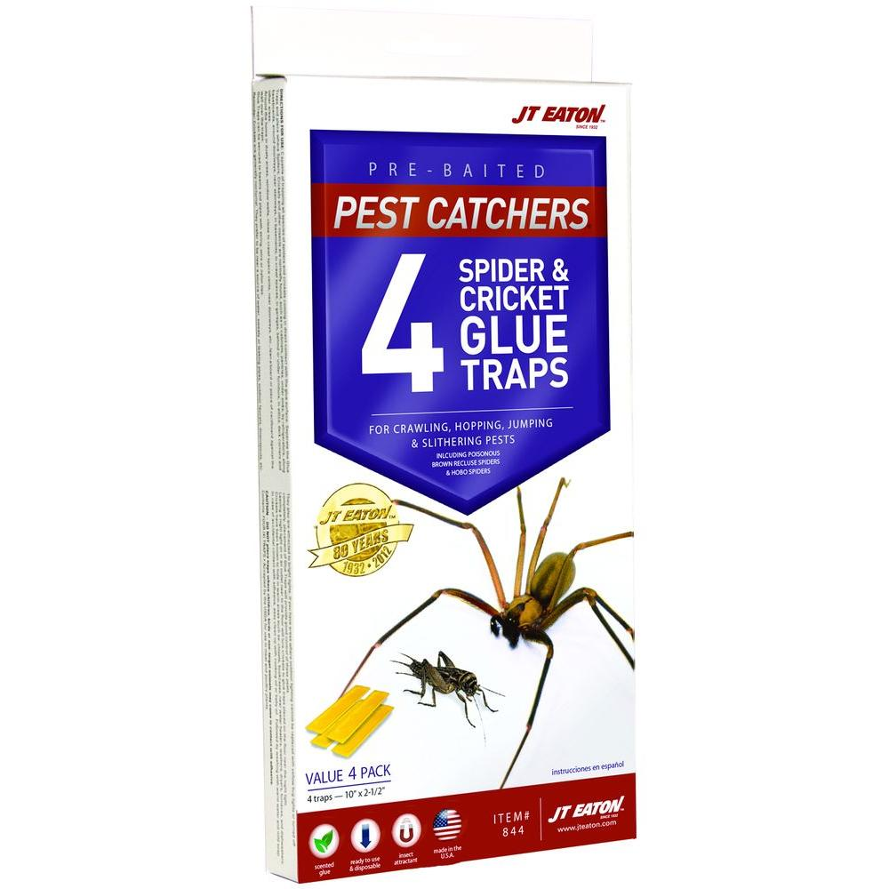 JT Eaton Pest Catchers Large Spider and Cricket Size Attractant Scented Glue Trap (4-Pack)