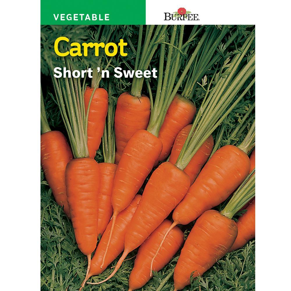 Carrot Short 'N Sweet Seed