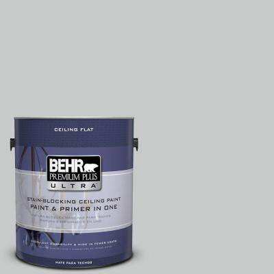 1 gal. No.UL260-17 Ceiling Tinted to Burnished Metal Flat Interior Paint and Primer in One