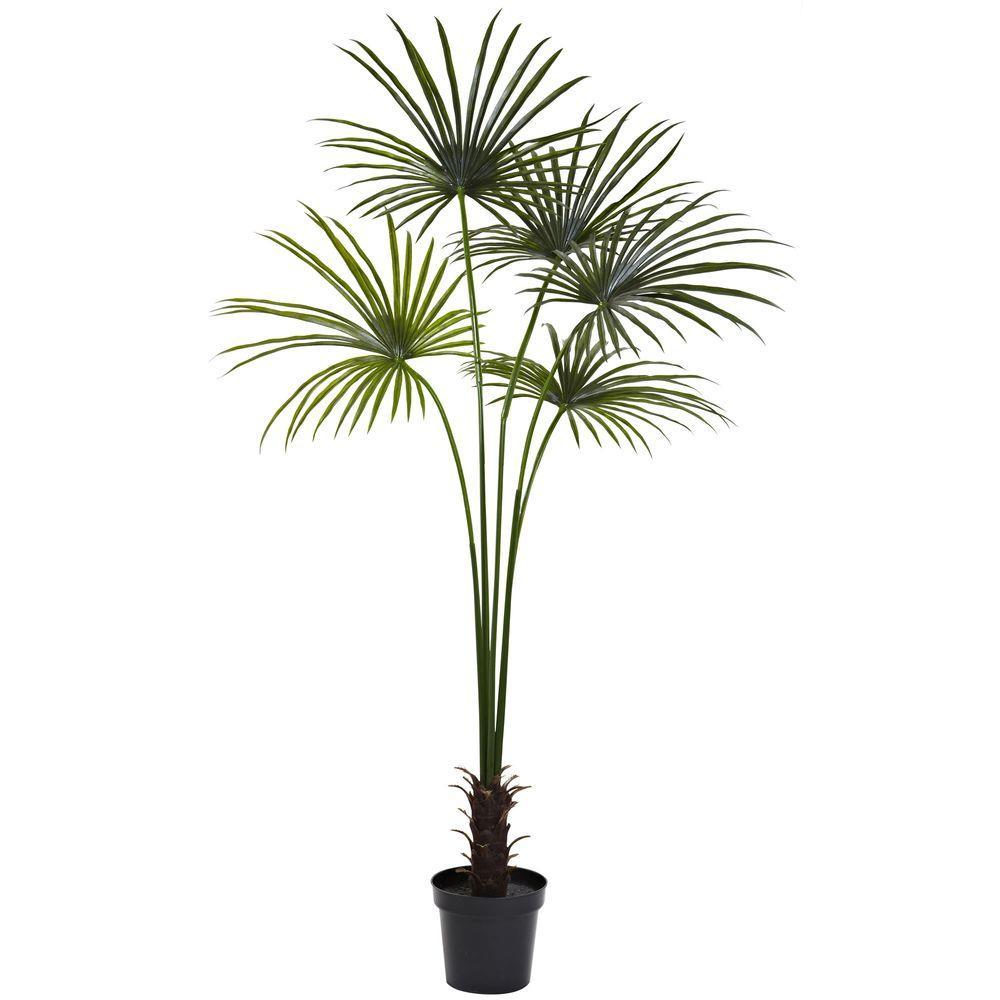 7 ft. UV Resistant Indoor/Outdoor Fan Palm Tree