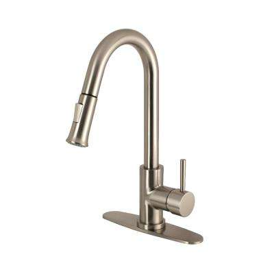 Modern Single-Handle Pull-Down Sprayer Kitchen Faucet in Brushed Nickel