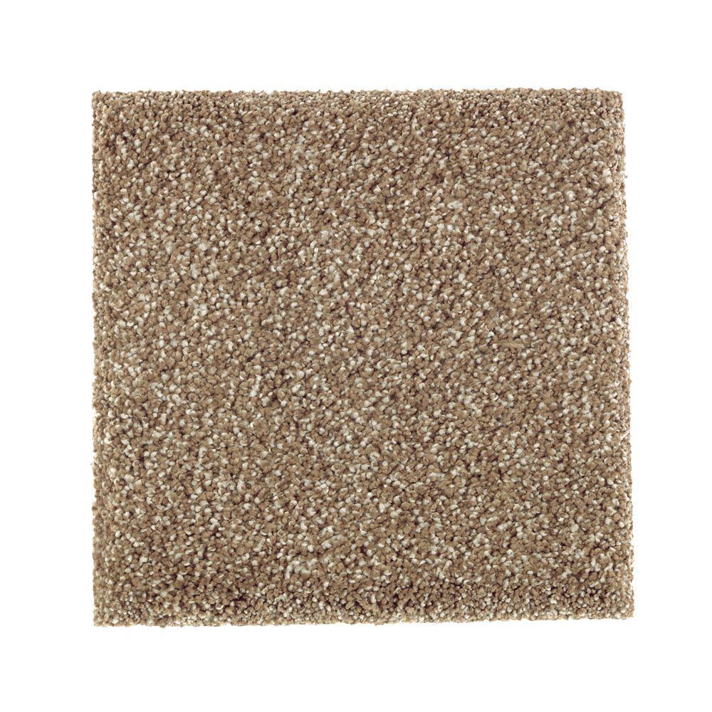 Petproof whirlwind i color bare texture 12 ft carpet for Pet resistant carpet