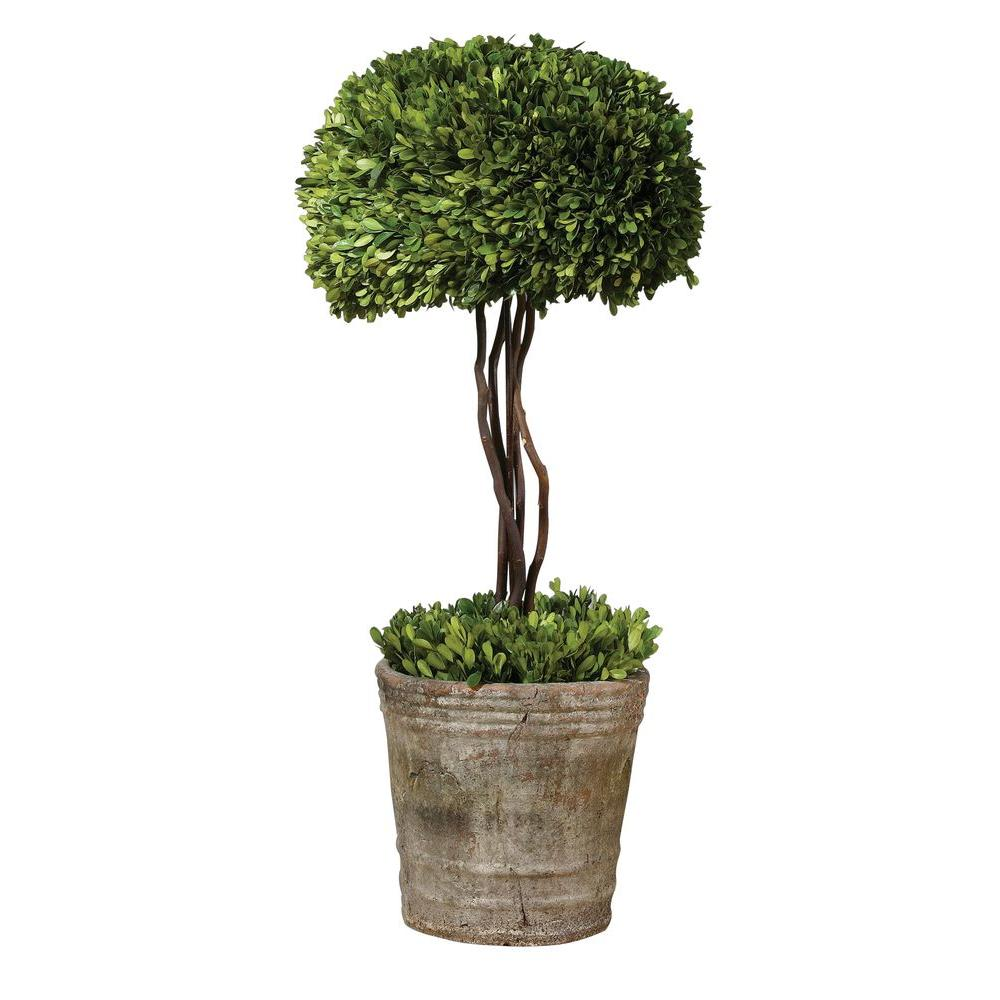 Home Decorators Collection 33 in. Preserved Boxwood Tree Topiary