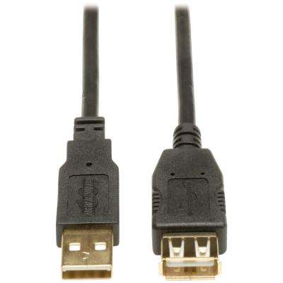 6 ft. USB 2.0 A/A Gold Extension Cable, Black