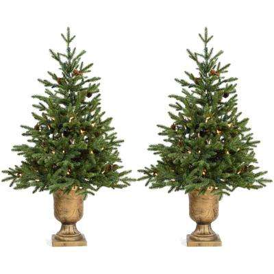 3 ft. Noble Fir Artificial Trees with Metallic Urn Bases and Battery-Operated LED String Lights (Set of 2)