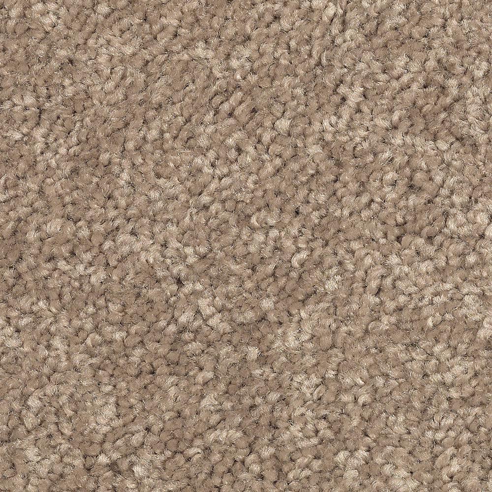 Gemini II-Color Tortoise Comb Textured 12 ft. Carpet