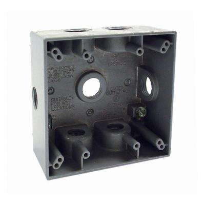 2-Gang Weatherproof Box with Seven 1/2 in. Outlets