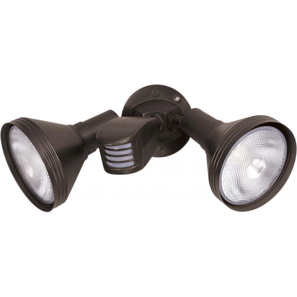 Tony 2-Light Bronze Flood Light