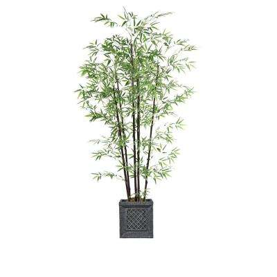 78 in. Tall Bamboo Tree in Planter