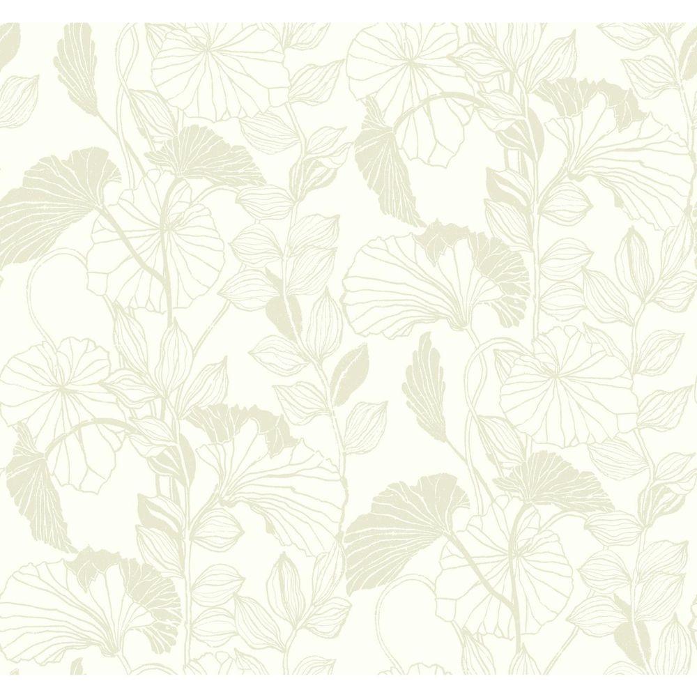 York Wallcoverings Black and White Leaf Outline Wallpaper ...