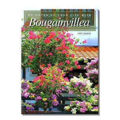 Brighten Up Your Life with Bougainvillea by Eric Simon