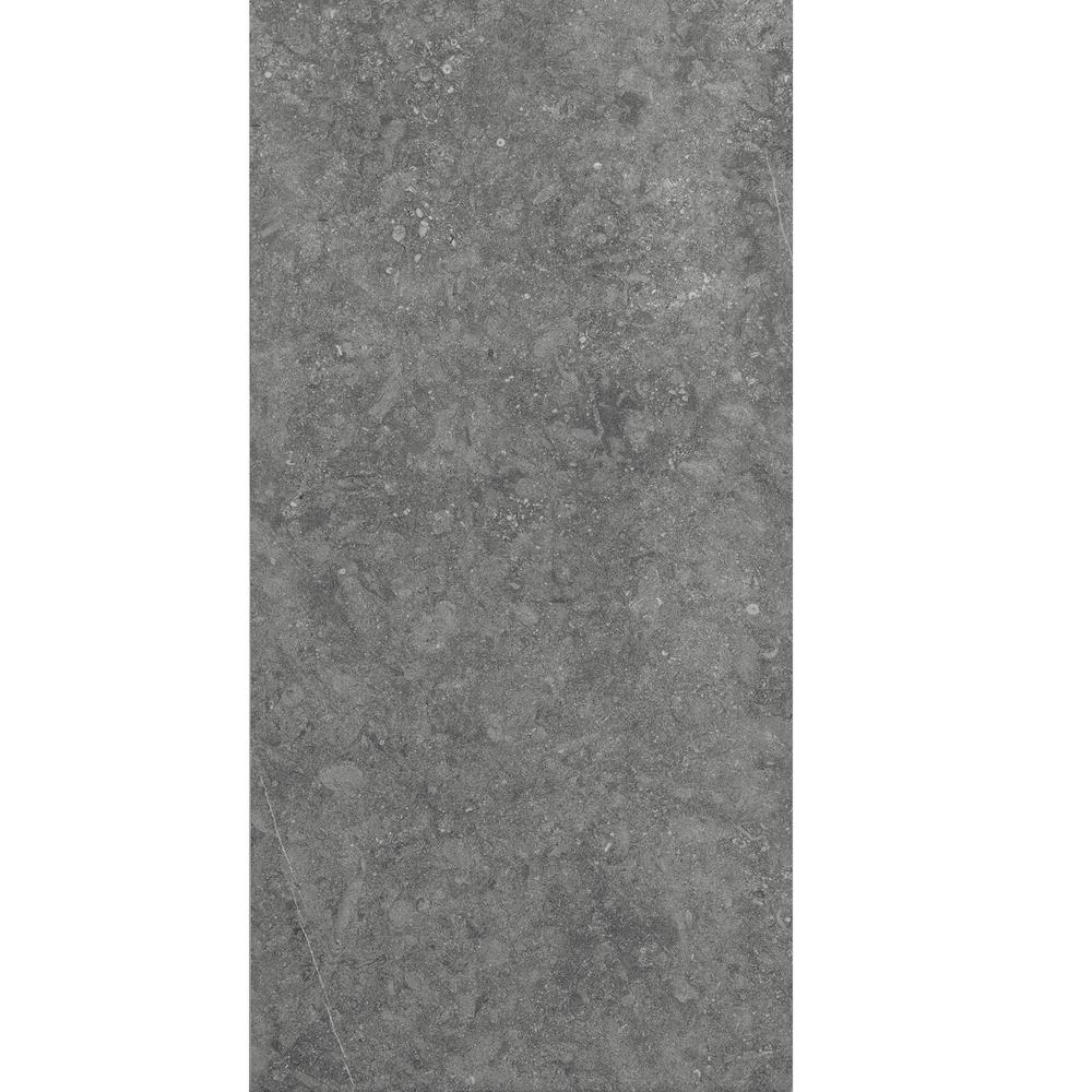 Daltile Albany Light Gray Matte 24 In X 48 In Color Body Porcelain