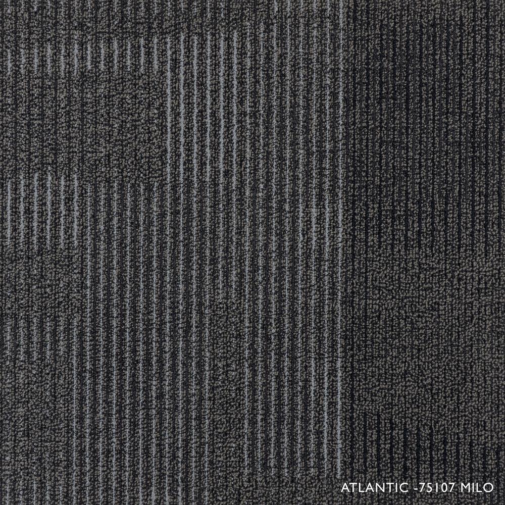 Atlantic Milo Loop 19.68 in. x 19.68 in. Carpet Tiles (8 Tiles/Case)