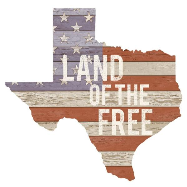 Multi-Colored Texas Wall Decal