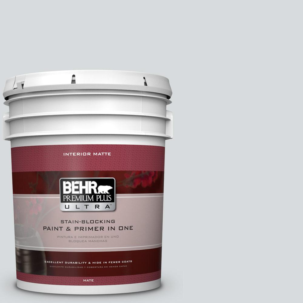 5 gal. #ECC-33-2 Silver Sands Matte Interior Paint and Primer in
