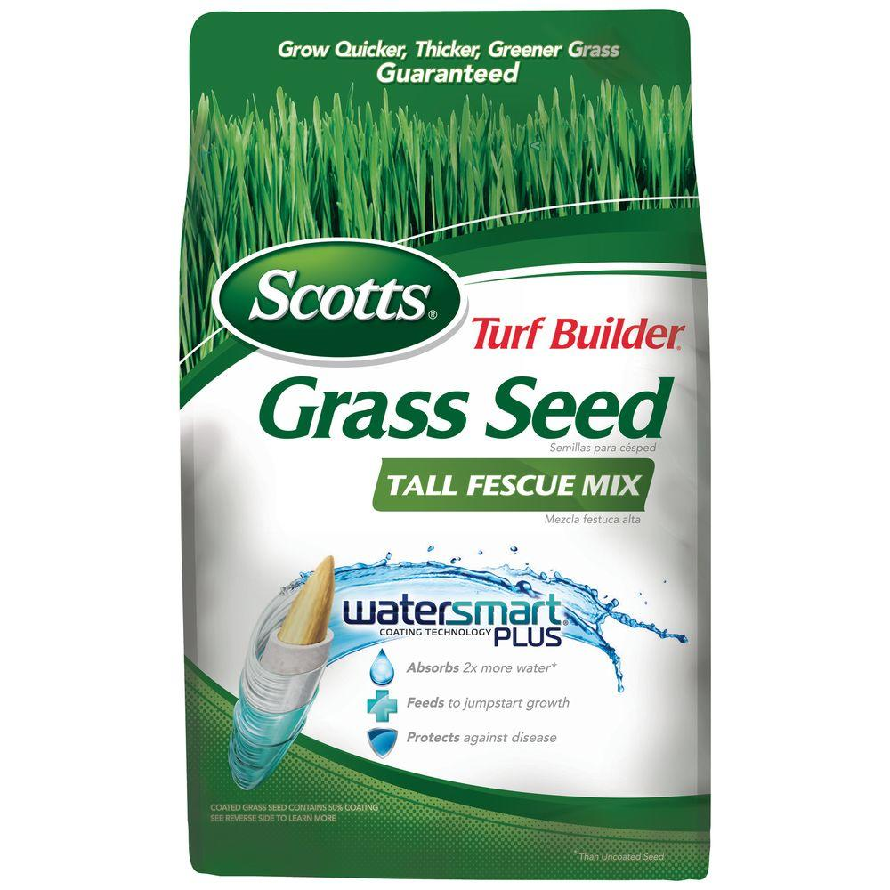 40 lb. Turf Builder Tall Fescue Mix Grass Seed