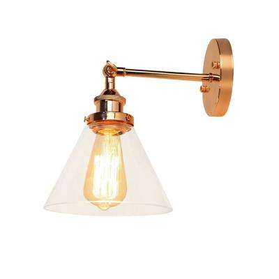 Kanyis 1-Light Rose Gold Glass Sconce