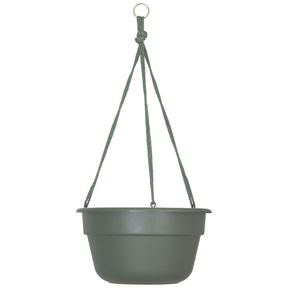 12 in. Living Green Dura Cotta Plastic Hanging Basket