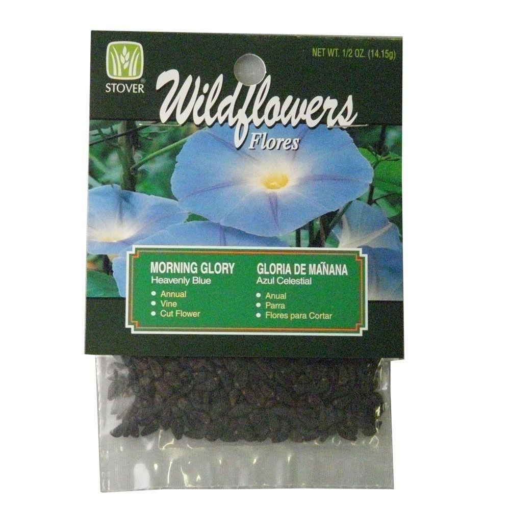 Stover Morning Glory Heavenly Blue Flower Seed