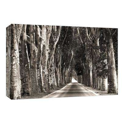 10 in. x 12 in. ''Stately Road'' By PTM Images Canvas Wall Art
