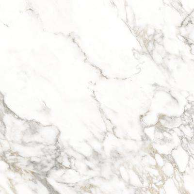 3 in  x 3 in  Porcelain Countertop Sample in Arabescato Visio Polished