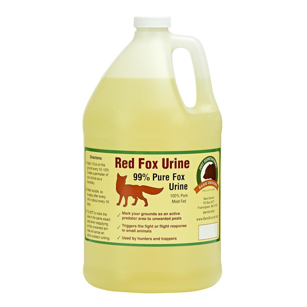 1 Gal. Fox Urine by Bare Ground