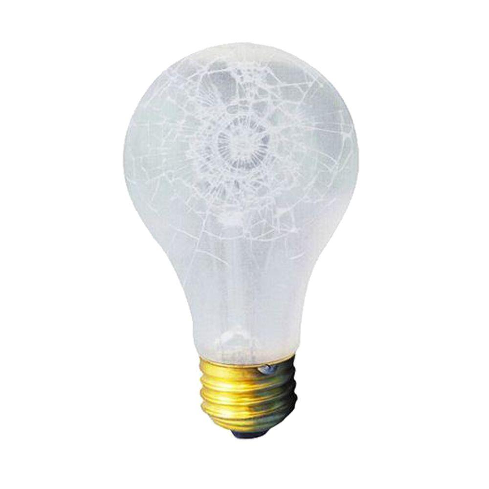 Bulbrite 75-Watt Incandescent A19 Light Bulb (10-Pack)