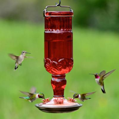 Red Antique Bottle Decorative Glass Hummingbird Feeder - 24 oz. Capacity