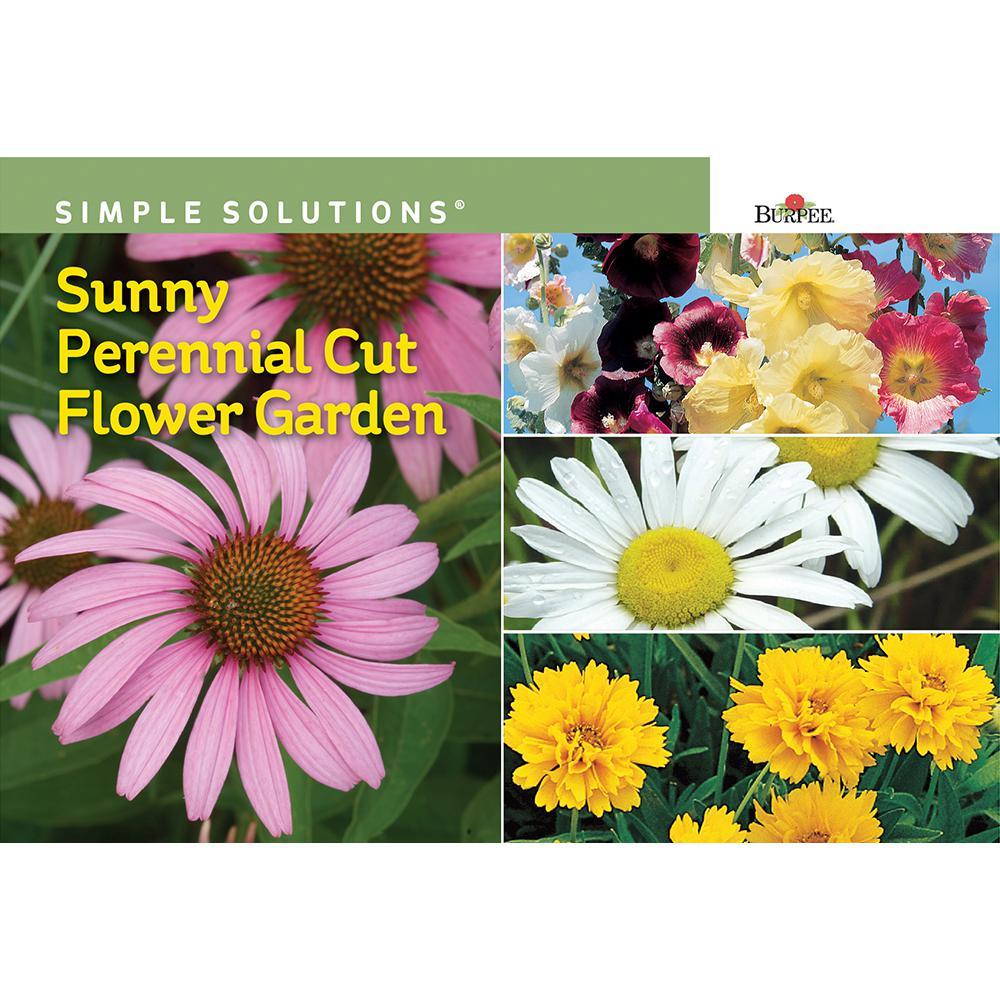Burpee Sunny Perennial Cut Flower Garden 69304 The Home Depot
