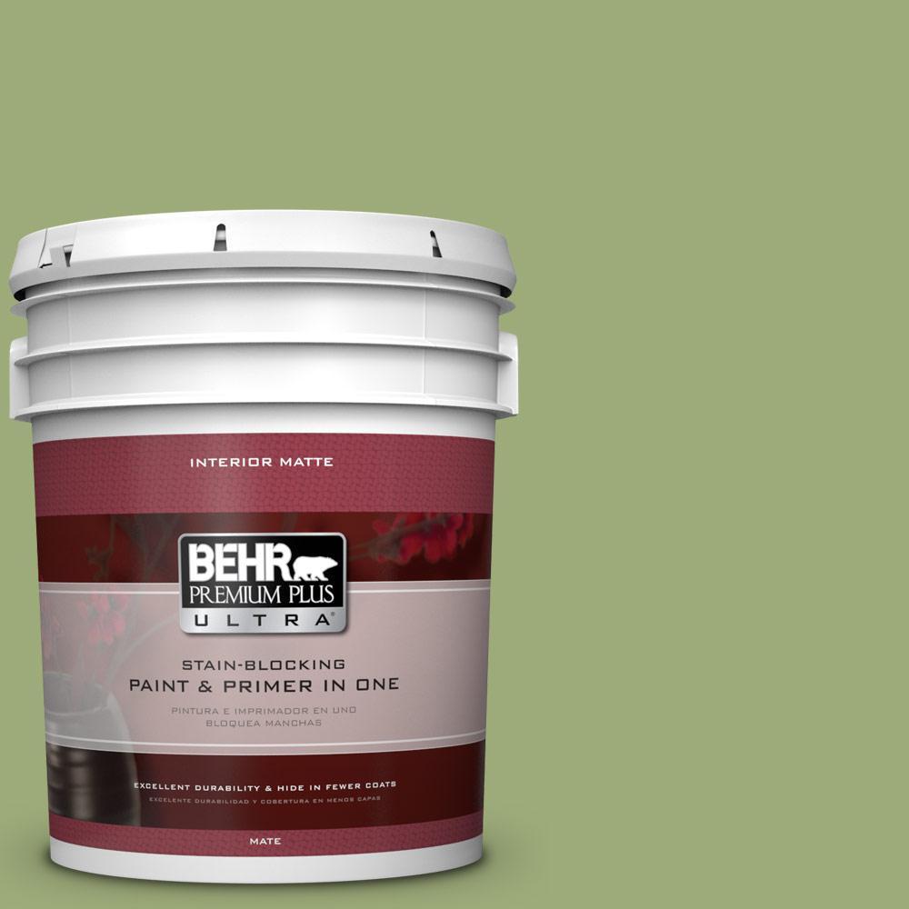 5 gal. #BIC-12 Siamese Green Matte Interior Paint