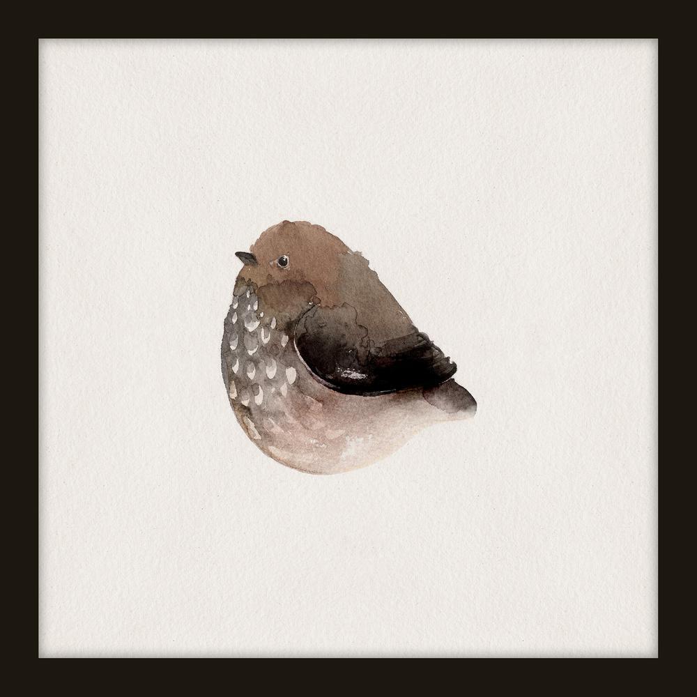 "14 in. x 14 in. ""Plump Birds IV"" Framed Giclee Print Wall Art"