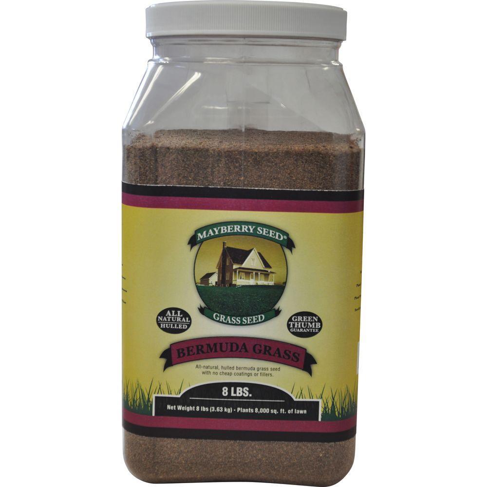 Zuo Modern 8 lb. Bermuda Grass Seed